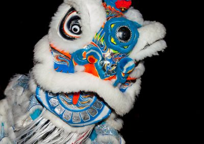 Lion-Dance---Yvonne-McKenzie-copy